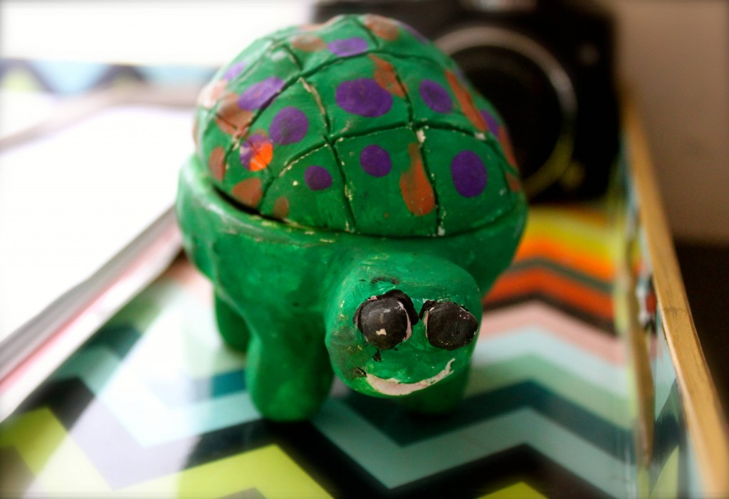 Myles made me a turtle