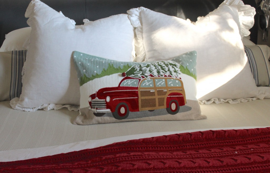 Pottery barn woody pillow
