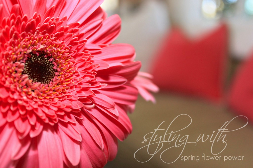 spring flower power 1