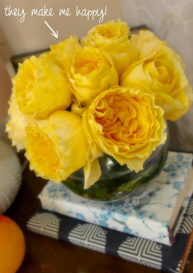 garden roses 2