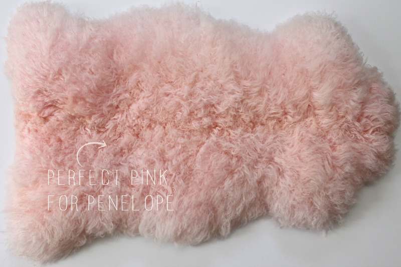 Perfect pink for Penelope