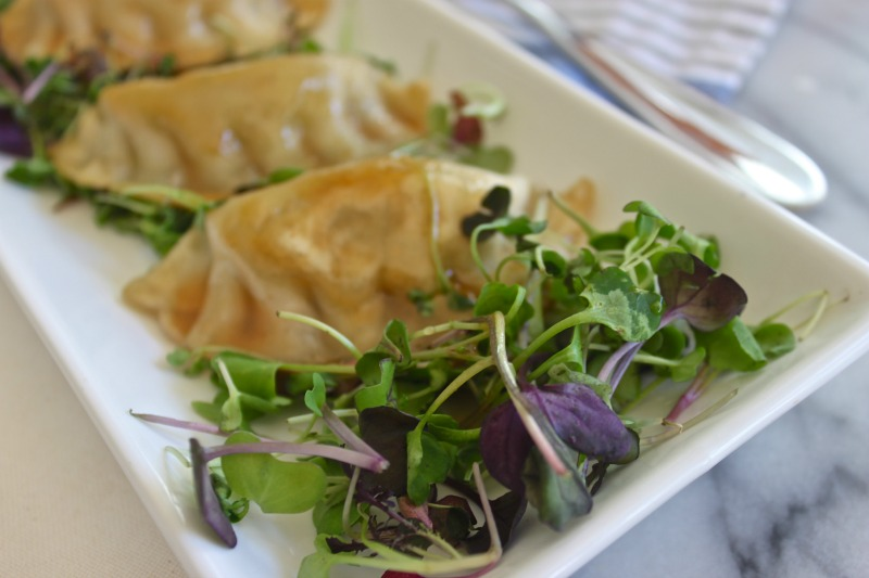 Plum dumpling micro green salad