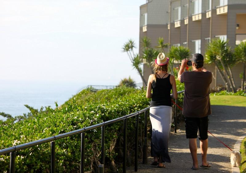 Palm breez Brad and Julie